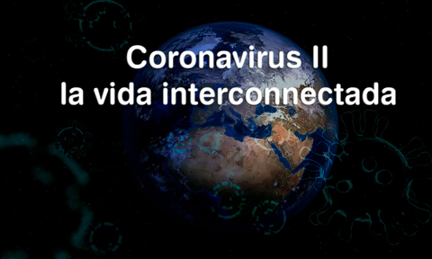 Coronavirus, la vida interconnectada?